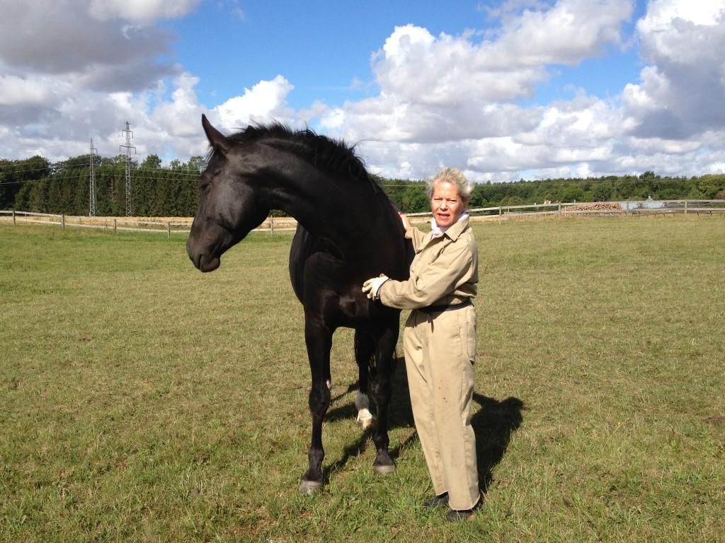 9. September 2013 Zobel overvejer lige om hun skal følge med flokken eller blive og kæle. Hun blev !!