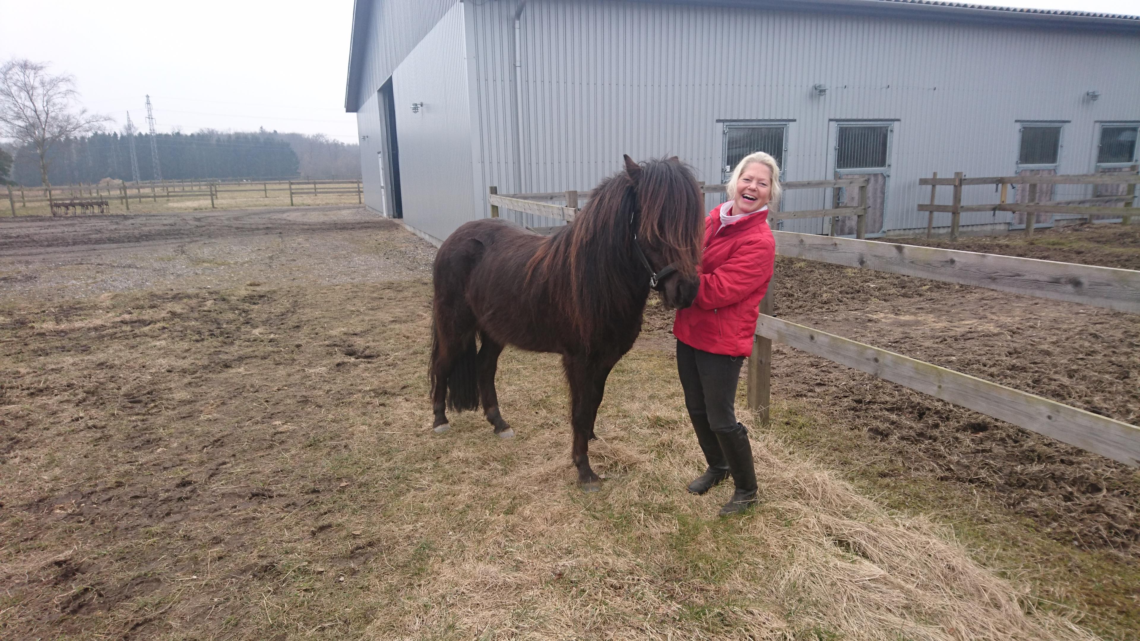 Marts 2018. Isol og Hanne har lige haft en skøn ridetur sammen. Hvem der har haft det sjovest ved jeg ikke.