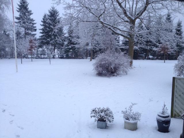 Marts 2018. Så bliver vinteren vist ikke flottere. Sneen hænger på buske og træer - og udsigt til tøvejr de kommende dage.